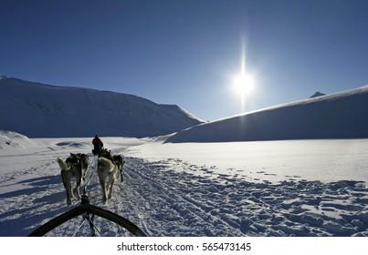 Dogsledding near Longyearbyen, Svalbard archipelago, Arctic.