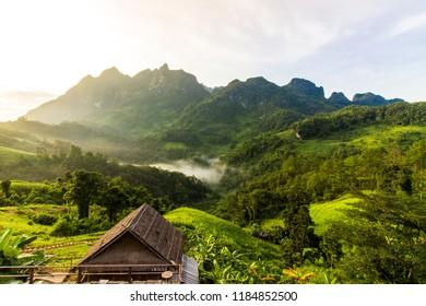 Doi Luang Chiang Dao Homestay - Doi Lang Chiang Dao