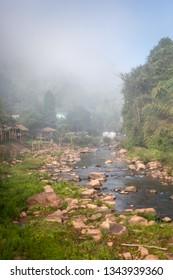 Doi Phu Kha National Park, Nan Province, Thailand