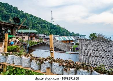 Doi Pui Mong hill tribe village at Doi Suthep Pui national park, Thailand.