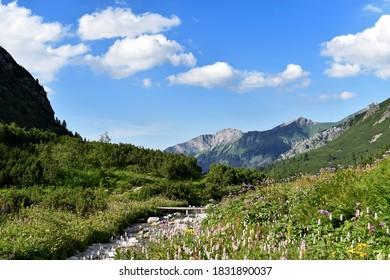 Zadná Javorová dolina valley and Jaworowy Mur in Vysoké Tatry Tatra Mountains in Tatranská Javorina in Slovakia