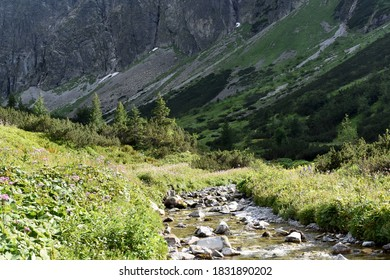 Zadná Javorová dolina valley and Jaworowy Mur in Vysoké Tatry Tatra Mountains in Tatranská Javorina Slovakia