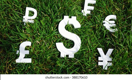 Dollar exchange currency on a grass background