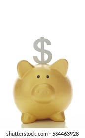 Dollar sign with piggy bank
