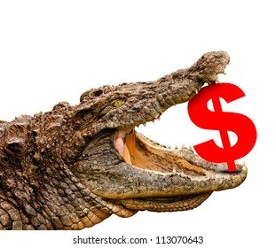 Dollar symbol eaten by crocodile for sale, crash or discount. Clipping path included! Ready for print or web page.