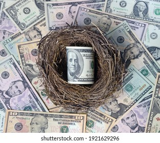 Dollars in a bird's nest as egg against dollars.