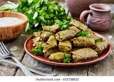 Dolma(tolma, sarma) - stuffed grape leaves with rice and  meat.  Traditional Caucasian, Ottoman, Turkish and Greek cuisine
