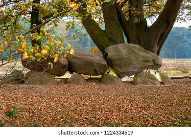 Dolmen in the Dutch province of Drenthe with a background of oak trees. A dolmen or in Dutch a Hunebed is construction work from the new stone age.