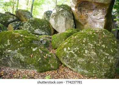 dolmen ruins covered by moss in a forest
