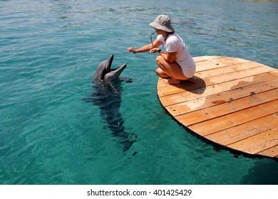 Dolphinarium in Eilat