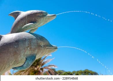 Dolphins at Mali Losinj in Croatia