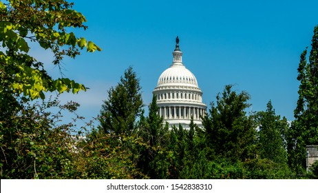 Dome of Capital building framed by trees in Washington DC