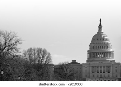 Dome of the congressional capitol building in Washington, DC in winter, with bare trees, in black and white.