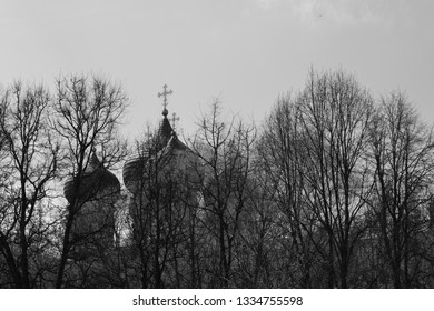 The domes and crosses of the church through the trees
