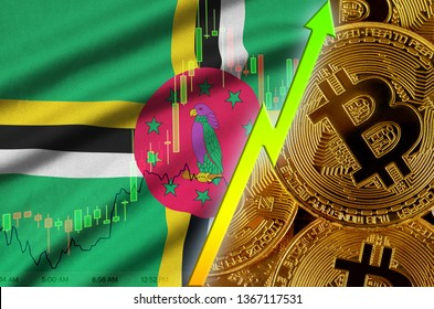 Dominica flag and cryptocurrency growing trend with many golden bitcoins