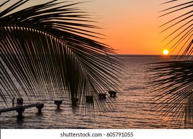 Dominica Sunset with pier between palm trees/Dominica Sunset Between Palm Trees