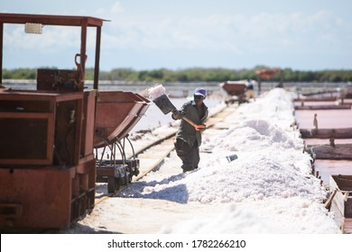 Dominican Republic, Las Salinas of Bani - October 20, 2019: Haitian on pink lakes for salt mining. A man with a shovel throws salt into a trolley. Heavy Manual labour in hot weather