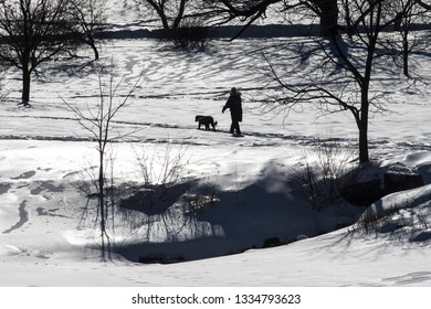 In the Dominion Arboretum, walking the dog along the Rideau Canal Western Pathway during winter in Ottawa, Canada