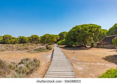 Donana National Park in Spain - A UNESCO World Heritage Site