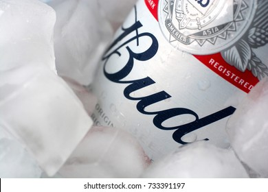 Donetsk, Ukraine - October 08, 2017. Bud beer bottle in ice. Close up with soft focus.
