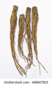 Dong Quai (Angelica sinensis)  on white background, also known as Dang Gui Ginseng. Chinese Herbal medicine (Radix Angelicae Sinensis)
