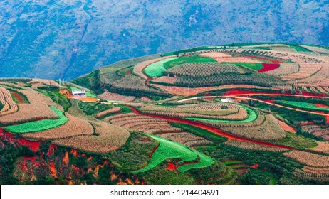 Dongchuan Agriculture,Red Land, Kunming Yunnan China