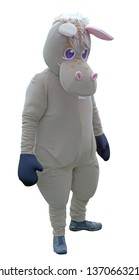 the donkey costume on white background