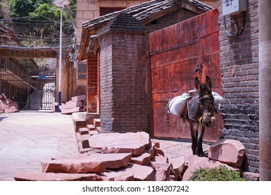 Donkey standing in front of a gate in Chinese ancient town Heijing in Yunnan Province