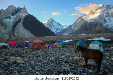 Donkeys walk pass the colorful camping tents on the way to K2 base camp with karakorum range in background in the evening time