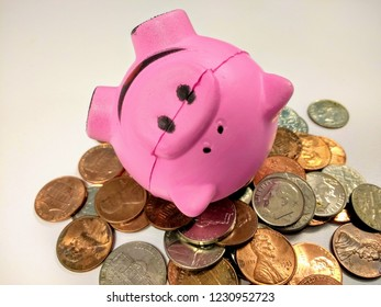 Don't break the bank piggy bank on coins