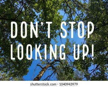 Don't stop looking up typography on photo of trees
