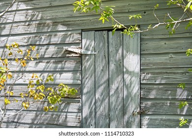 Door to Another Time - Weathered Wooden Door
