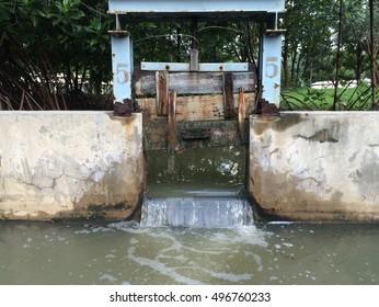 Door for control water level