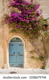 Door and flower