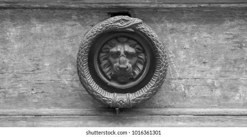 Door knocker of a snake eating tail ring with detailed carved lyon inside. Metal door knocker.