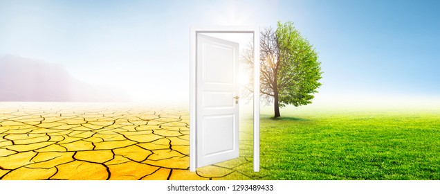 Door in Meadow with Tree