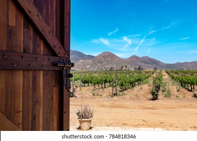Door opening to a vineyard in Ensenada, Baja California, Mexico.
