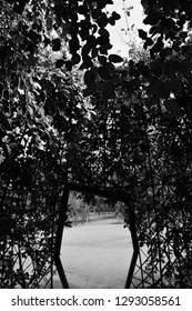 Door in the park