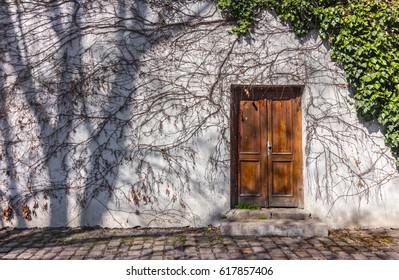 Door with plant texture