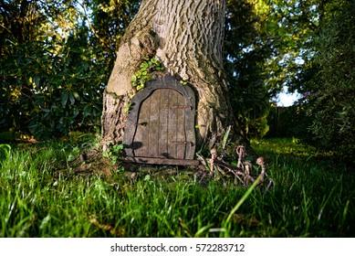 A Door In The Tree/ Tree Door