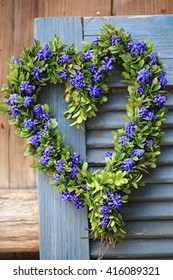 Door wreath in heart shape with boxwood and grape hyacinth flowers