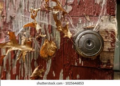 Doorknob on an old door covered in cobwebs. Off center.
