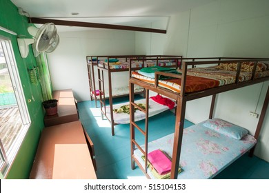 Dormitory style beds in a hostel
