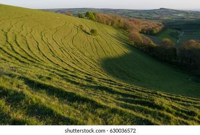 Dorset Coastal Landscape