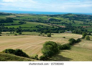 Dorset countryside ,England