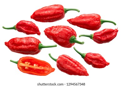 Dorset Naga or Naga Morich peppers (Capsicum chinense x C. frutescens), whole and halved ripe pods