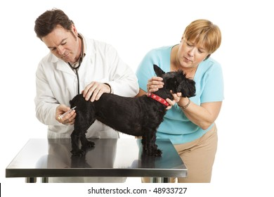 Doting dog owner comforts her Scotty while the vet gives it a shot.  Isolated on white.