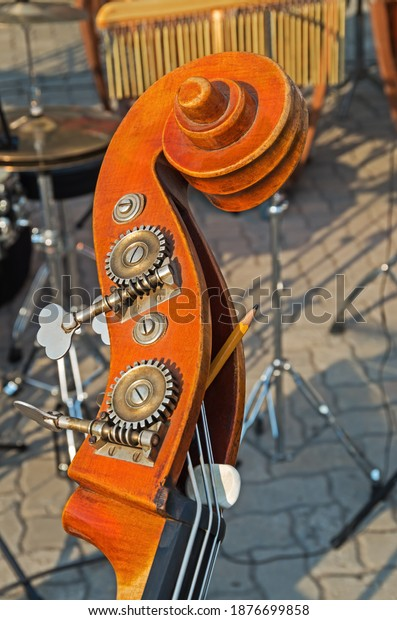 double-bass-neck-wooden-metal-600w-18766