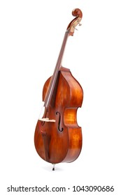 Double bass on white background