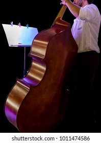 Double bass player contrabass playing in black background